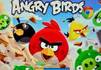 Angry Birds Cartoon Cartoons HD Wallpapers - Angry Birds Cartoon