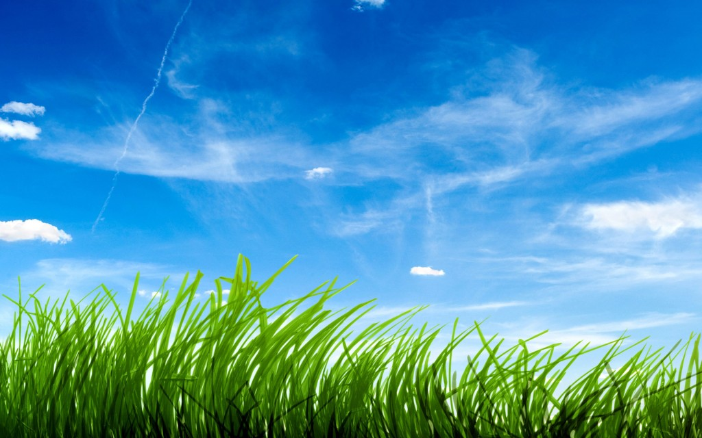 Blue Sky Green Grass Nature HD Wallpapers - Blue Sky Green Grass