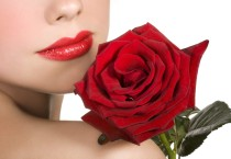 Rose Flowers and Girl HD Wallpapers - Rose Flowers and Girl