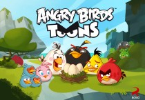 Angry Birds Toons Picture Cartoons HD Wallpapers - Angry Birds Toons Picture