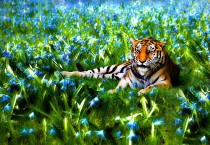 Amazing Tiger Painting
