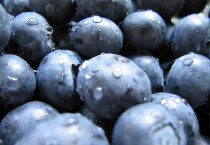Blueberries In HD